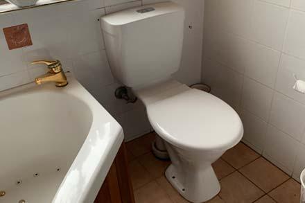 Leaking Toilet Repairs Penrith